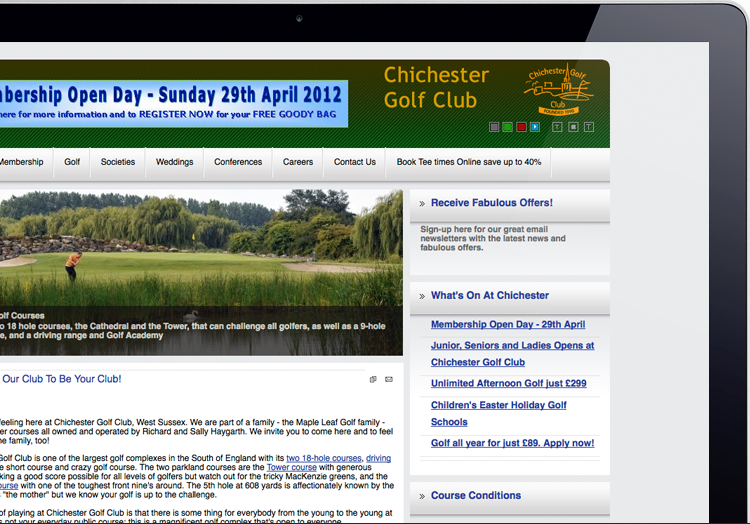 Example of one of the course's current websites.